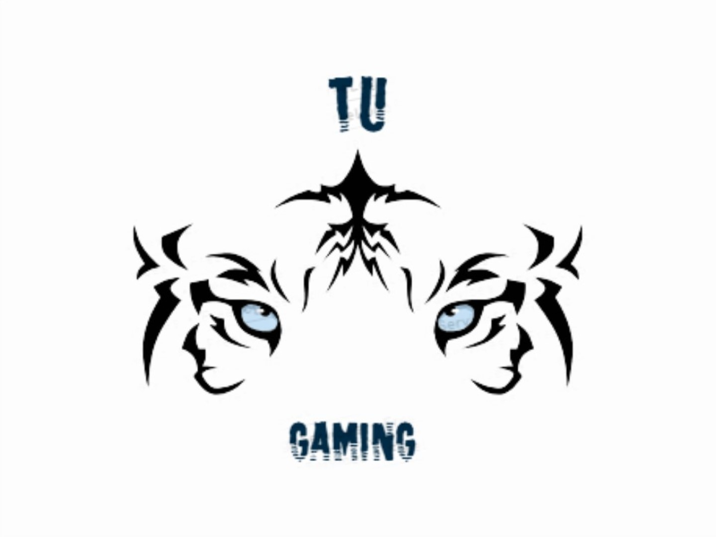 TUGaming Broadcast Funding