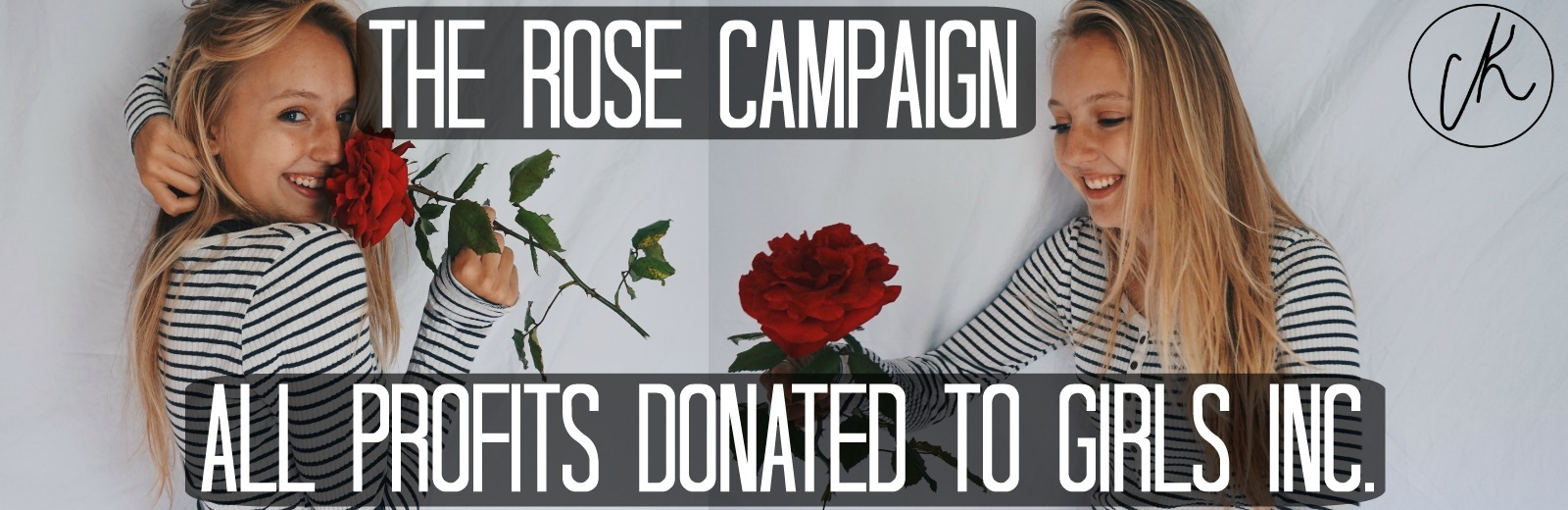 The Rose Campaign By Caitlin Kelly Store