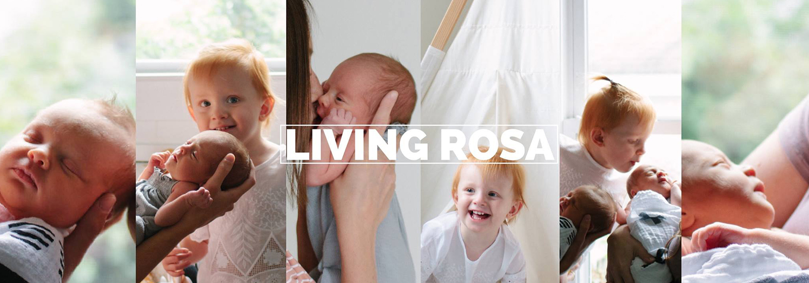 Living Rosa Store Store