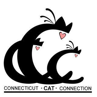 Connecticut Cat Connection